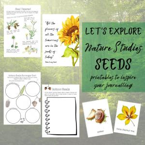 Seeds unit study nature