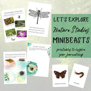 Nature study minibeasts