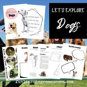Kids dog project activities